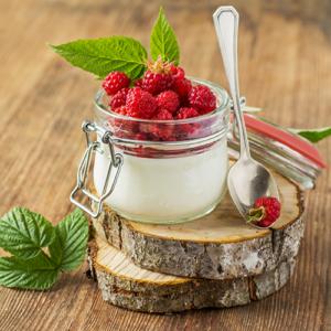 jogurt mrożony lody deser Firma Siorbet